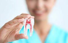 Лечение зубов в частной стоматологической клинике Максима Шубных в Москве
