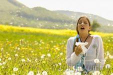 9 причин обострения аллергии