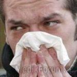 Аллергия на кошек теперь излечима