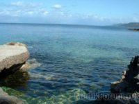 Целебные свойства морской воды приведут к лучшей работе