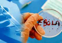 Япония обеспокоена распространением Эболы