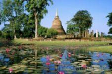 Эпидемиологи не рекомендуют туристам ехать в Таиланд