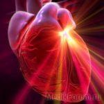 Российские кардиохирурги пройдут стажировку в Европе
