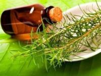 Врач посоветовал использовать природные масла для защиты от вирусов